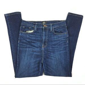 4/$25 BDG Twig High Rise Skinny Jeans